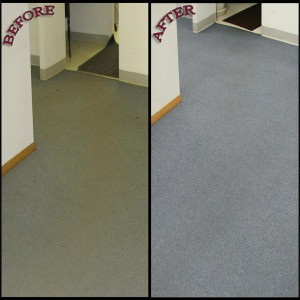 carpet cleaning result