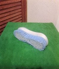 Brush used with carpet stain remover